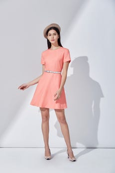 Iridescent Dobby Fit and Flare Belted Dress