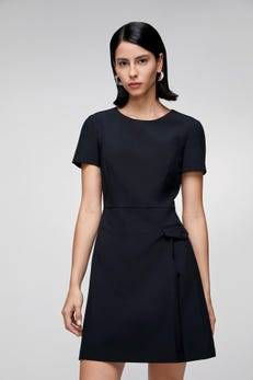 Fitted Dress with Pleats Detail