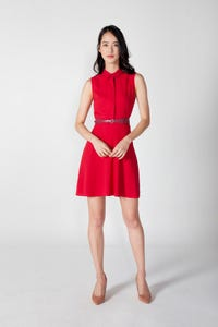 Belted Fit and Flare Collared Dress